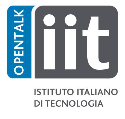 Logo IIT
