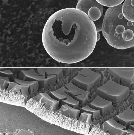 Immagini al Microscopio Elettronico a Scansione di Diego Manfredi: Halloween (Polvere di lega di titanio, in alto) e TAvoletta di ciocco-wafer (Nanofili di ossido di zinco, in basso)