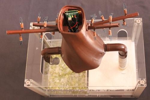 Il Plantoide, robot ispirato alle piante di Barbara Mazzolai